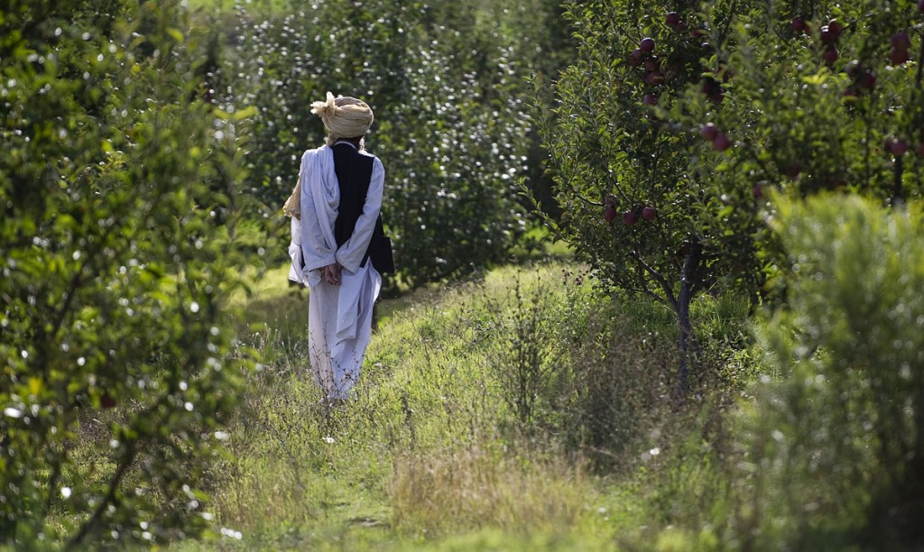 An elder walks through an orchard in the village of Shatowry, home of mullah Tuti. We actually were given some apples. They were tasty (Photo: Heimken))